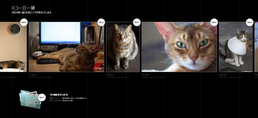 SIM家のネコたち.jpg